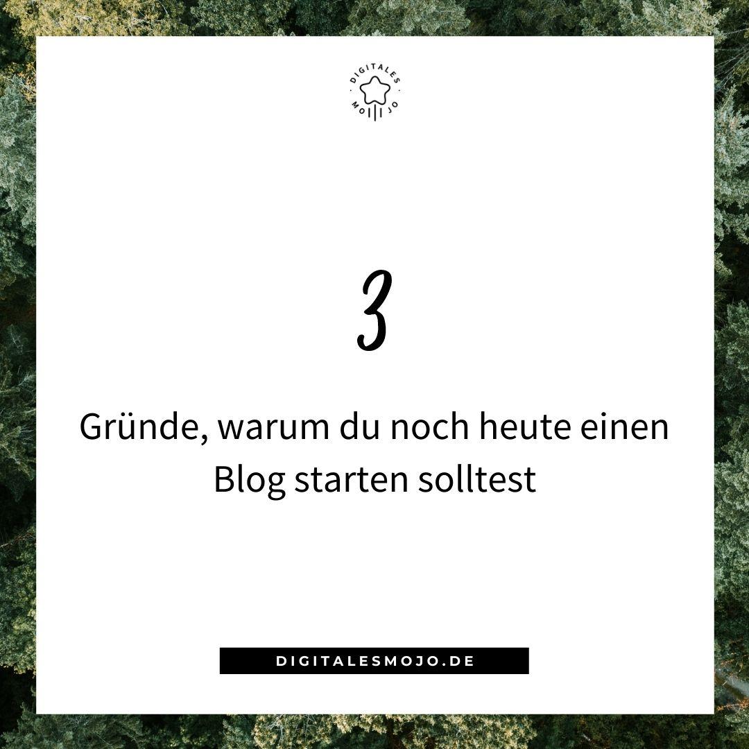Blog starten: Blog starten 1